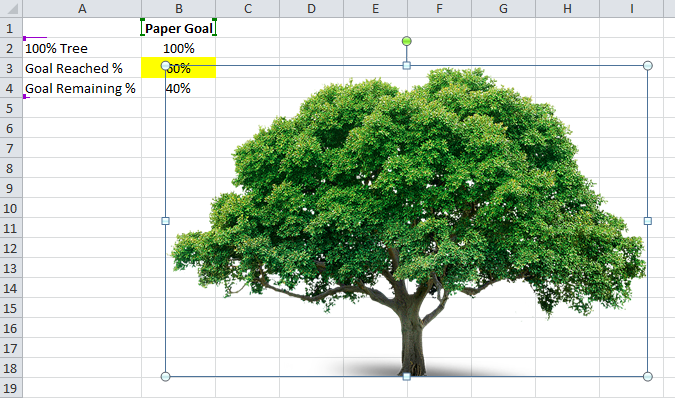 Tree Image in Worksheet
